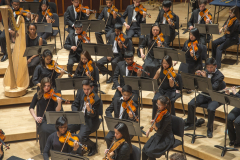 violin2-section